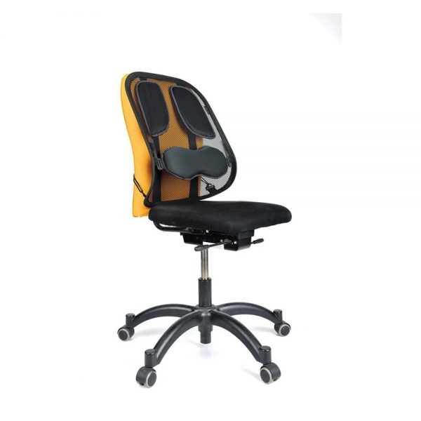 Suport ergonomic spate, Mesh Professional, Fellowes
